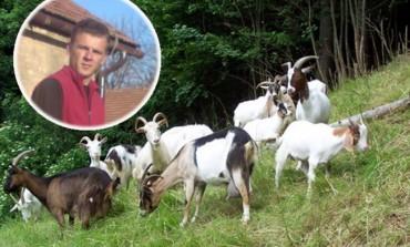 Admir Fejzić iz Visokog: Od 20 koza može se zaraditi doktorska plaća