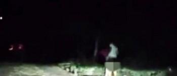 NISU OVO OČEKIVALI: Dvojac u 'žestokom' klinču uhvaćen u grmlju pored ceste (VIDEO)