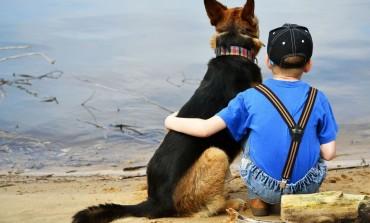 Pas spasio devetogodišnjaka kojeg je majka pokušala utopiti