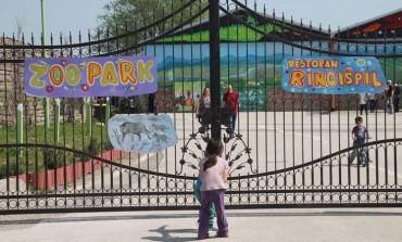 Zoo park u Tuzli oaza mira i zanimljivosti