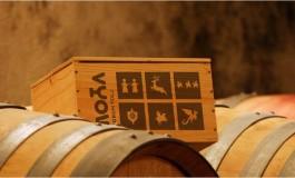 Četiri medalje za vina Podruma Tolj na Sabatini 2018