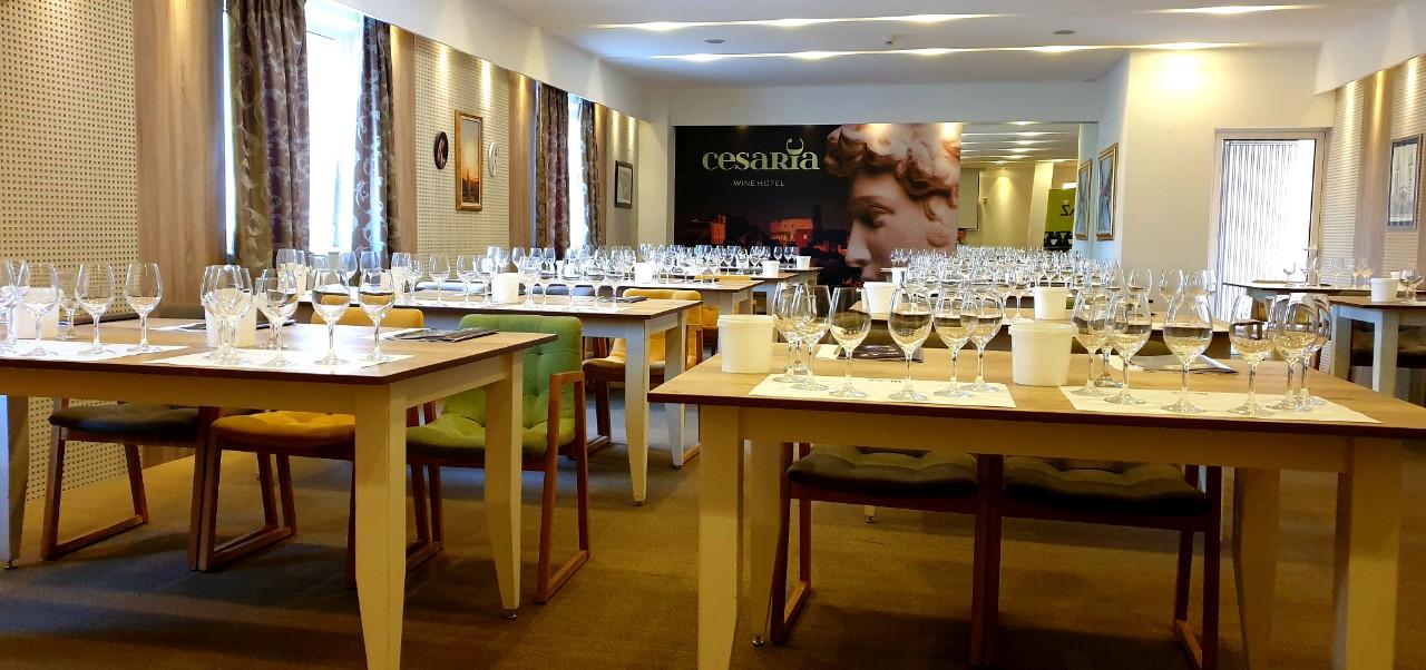 vasilj-vinski hotel Cesarica3