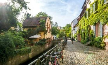 Recept za dug život - Zelenilo i drveće produžava život ljudi u gradovima