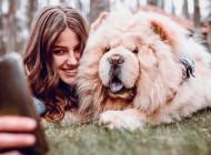 Imati psa je dobro za zdravlje: Izdržljiviji ste, imate jače srce