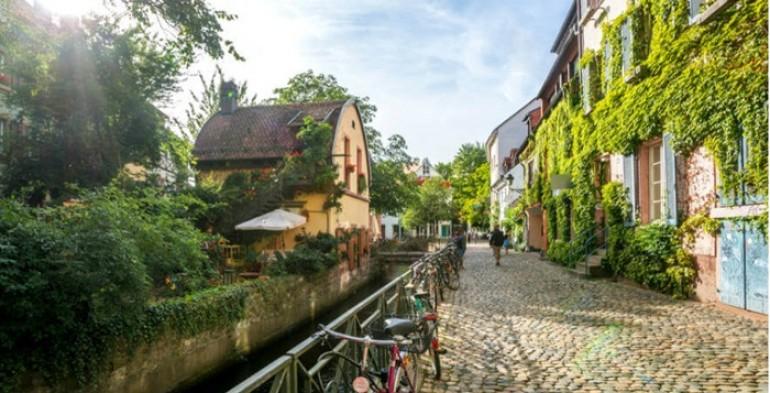 Recept za dug život – Zelenilo i drveće produžava život ljudi u gradovima