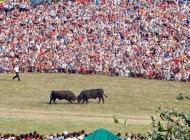 Sve je spremno za tradicionalnu manifestaciju: Čevljanovići će u nedjelju opet biti centar Balkana