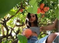 Emily Ratajkowski uvijek nađe način da pokaže sisu, čak i kad se popne na drvo