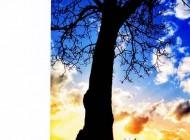 Knjiga.ba: Kraj ljeta sa novim izdanjima