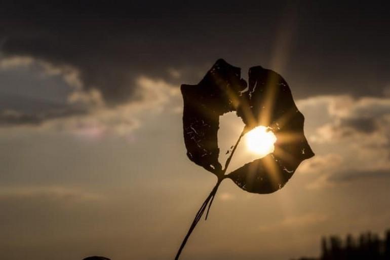 """Zašto vam se srce slama iznova i iznova: Ovnova dobrota je neprepoznata, Vaga """"popravlja"""" partnere"""