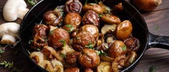 Gljive su prebogate hranjivim sastojcima